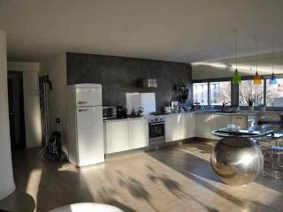 Grand Appartement type loft - Avignon vacation rentals