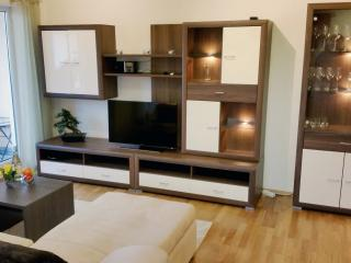 Apartment Luitpoldpark - Ingolstadt vacation rentals