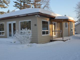 Wasaga Beach Cottage newly renovated and newly fur - Wasaga Beach vacation rentals
