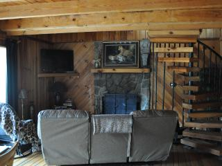 Affordable, Big Beautiful Cabins 6 miles to Helen - Clayton vacation rentals