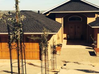 Vendees Villa - Kelseyville vacation rentals
