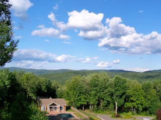 Gorgeous Mountain Retreat - New Lebanon vacation rentals