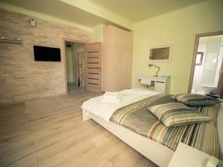 Cluj Napoca Apartament Lux Closca - Cluj-Napoca vacation rentals