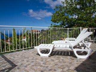Relax conforto e Elegancia - Prazeres vacation rentals