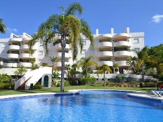 Apartment in Golden Mile - Marbella vacation rentals