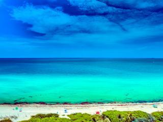 Ocean&Bay view in Amazing MIA Beach (14) - Miami Beach vacation rentals