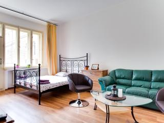Nice apartment in the heart of the historic center - Prague vacation rentals