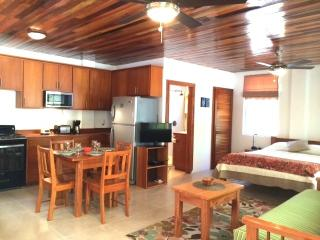 Steps to the Ocean* Studio Suite w/ Pool an Dock - Caye Caulker vacation rentals