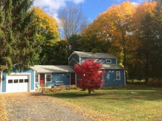 Charming get-a-way in Great Barrington Berkshires - Pittsfield vacation rentals