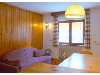 Lovely Ski Condo in Dolomities - Cable Car Ciampaq - Transacqua vacation rentals