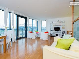 2 bed overlooking Olympic Stadium, Omega Works, Stratford - London vacation rentals