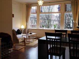 Spacious Apartment Heemskerkstraat2 - The Hague vacation rentals