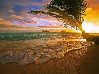 Sunrise in Paradise - Hauula vacation rentals