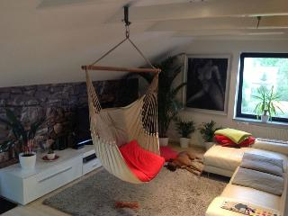 Funky apartment + Boxer + free coffe + fruits - Ljubljana vacation rentals