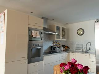 Lovely House Suburb of Amsterdam - Almere vacation rentals