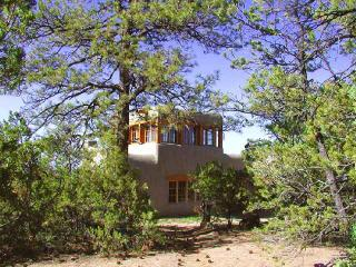 Coyote Mountain Luxury Cabin - New Mexico vacation rentals