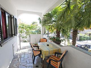 3277 A5(2+2) - Novigrad - Novigrad vacation rentals