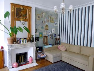Cool apartment by the canal. Free wi-fi! Blu-ray! - 3rd Arrondissement Temple vacation rentals