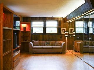 Ground floor sunlit apt. in great area! - Long Island vacation rentals