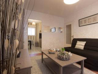Chouette appartement dijon - Dijon vacation rentals