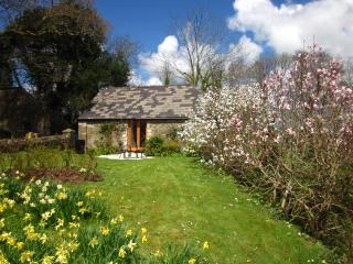 """The Tamar Orchard Barn"" – studio in Cornwall with terrace, garden & mountain views - Gunnislake vacation rentals"
