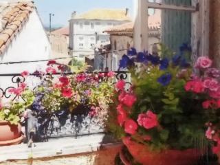 """Maison de Grandmere"" - Charming village house in Aude with terrace, near Canal du Midi & beaches - Pouzols-Minervois vacation rentals"