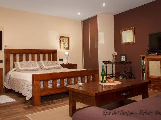 Estudio Spa. - Asturias vacation rentals