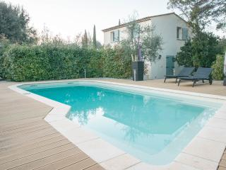 Villa south of France for 6 - Montauroux vacation rentals