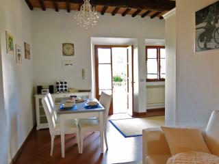 APT IN TUSCANY COUNTRYSIDE - A/C - WIFI - PARKING - Montelupo Fiorentino vacation rentals