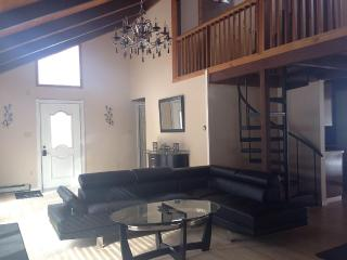 ELEGANT, CONTEMPORARY 3 BEDROOM LOFT, FREE  WIFI, - Bushkill vacation rentals