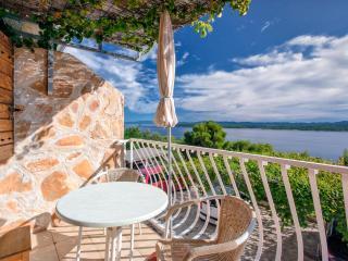 Villa Cincilograd - Zavala, Hvar - Cove Stiniva (Vela Luka) vacation rentals