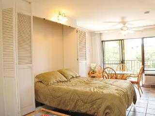 Studio -  Walk to beach - May & June Special $89 - Kihei vacation rentals
