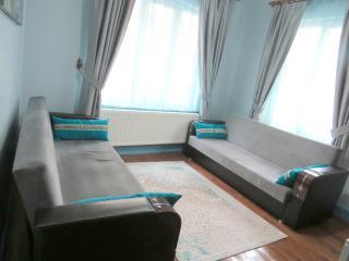 Berry Life - Bosporus Blue Concept (Suit) - Istanbul vacation rentals