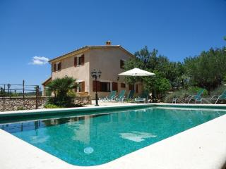 Beautiful villa surrounded by peaceful - Llubi vacation rentals