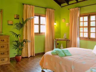 Casa El Teide - Icod de los Vinos vacation rentals