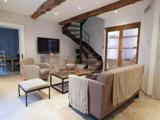 Fully renovated loft in the center of Valbonne village! - Valbonne vacation rentals