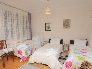 HAZZO PULO 7PERSON CENTRALRETROCLEAN - Istanbul Province vacation rentals