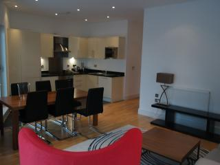 Two Bedroom Apartment  A605  canary wharf - London vacation rentals