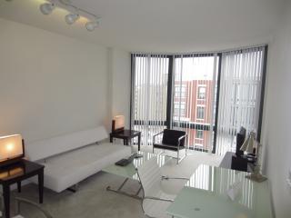 Lux 1BR Apt near Logan Circle - Washington DC vacation rentals