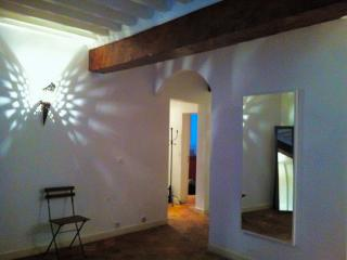 Appartment in the very heart of Avignon - Luberon vacation rentals