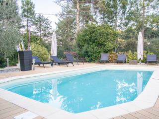 Villa South of France for 5 - Montauroux vacation rentals