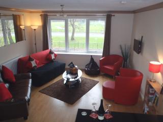 'Comfyglasgow' Holiday Apartment on Glasgow Green - Glasgow vacation rentals