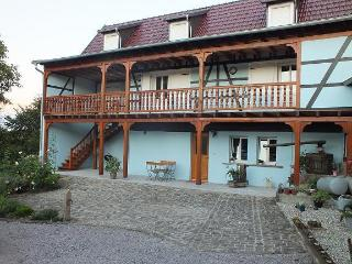 SELF COTTAGE IN ALSACE - Kuhlendorf vacation rentals