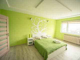 Cluj Napoca Apartament Lux Cuza Voda - Cluj-Napoca vacation rentals