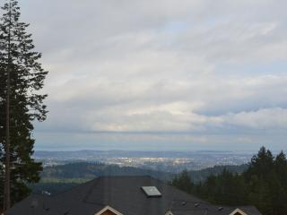 Panoramic View on Bear Mountain - Cobble Hill vacation rentals
