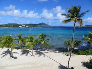 sapphire beach condo on best beach in st thomas - Saint Thomas vacation rentals