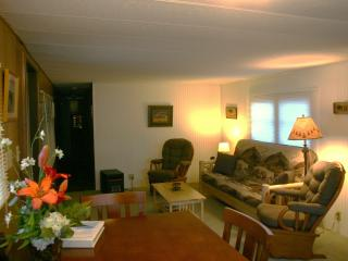 Bison Home - mfg home for the value conscious! - West Yellowstone vacation rentals