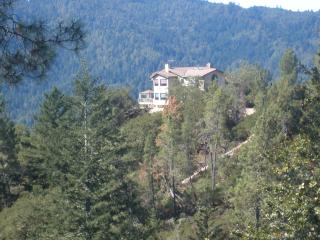Mountain Top Estate on 20 acres - Loma Mar vacation rentals