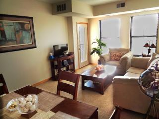1Br Condo w/ Lot of Amenities on LightRail - Minneapolis vacation rentals