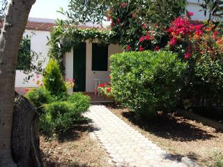 Residence Alba Vieste Gargano - Vieste vacation rentals